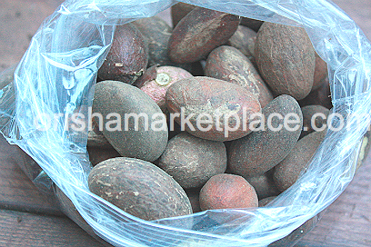 Orogbo Bitter Kola 1 Pound - Click Image to Close